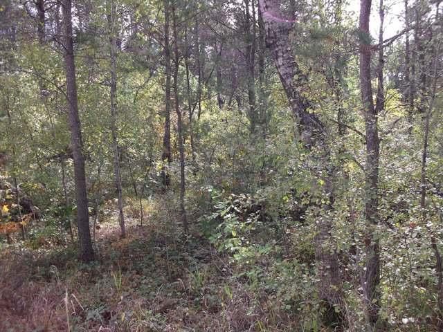 Listing Photo for 4 LOTS Navajo Trail