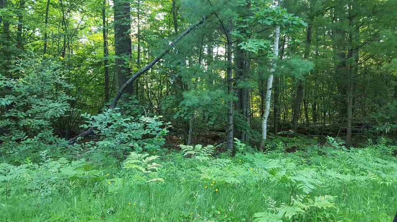Listing Photo for XXX TALL PINES Tr